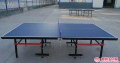 全新二手乒乓球桌可折叠家用