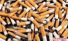 收购烟头,不泡水,不爆珠,不发霉